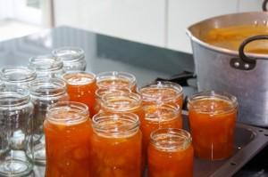marmellata-di-albicocche-fatta-in-casa