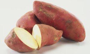 patate-dolci1